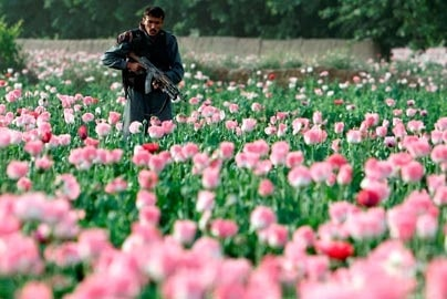Read more about the article A Brief History of the War in Afghanistan